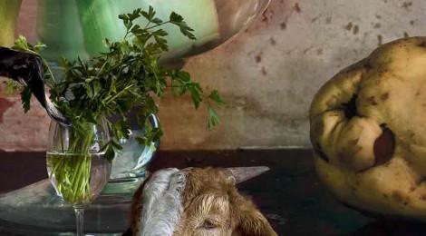 17.01.2016 / 16:55 / arte / Grande Dame großformatiger Stillleben: Vera Mercer